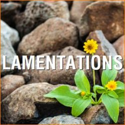 An Introduction to Lamentations
