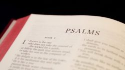 Through the Psalms - Psalm 1